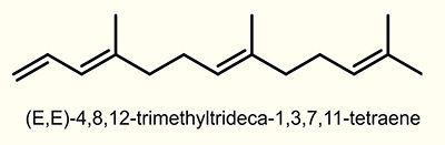 (E)-4,8-Dimethyl-1,3,7-nonatriene (E-DMNT)