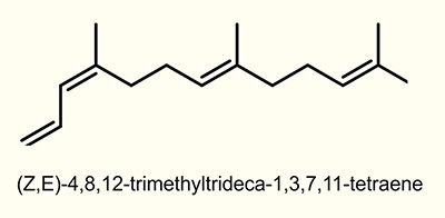 (Z)-4,8-Dimethyl-1,3,7-nonatriene (Z-DMNT)